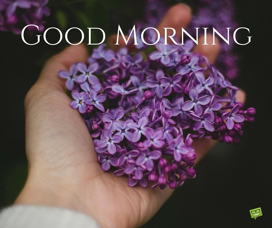 A Wish for the New Day : Good Morning!