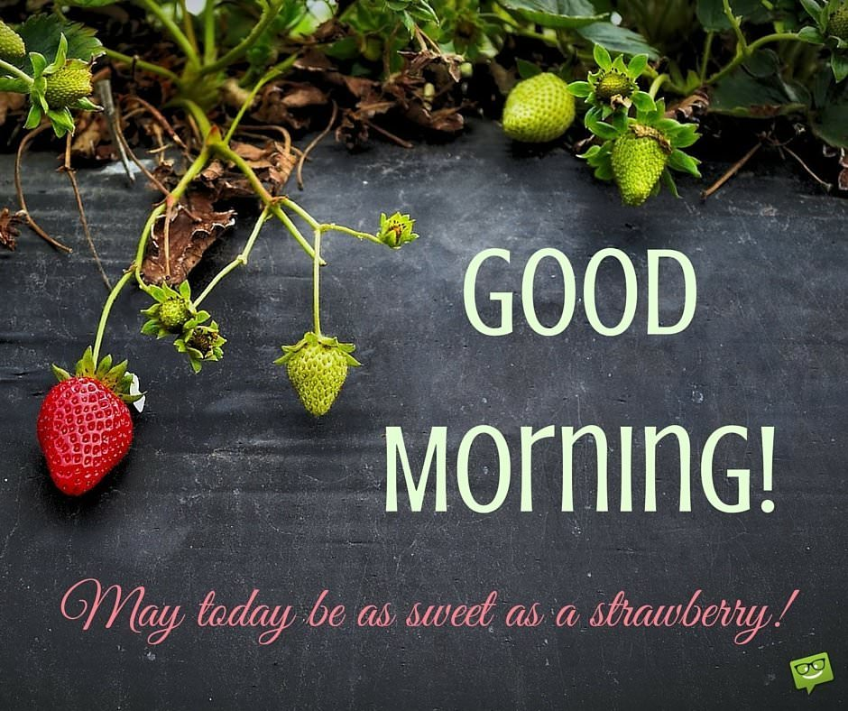 Good Morning. May today be as sweet as a strawberry!