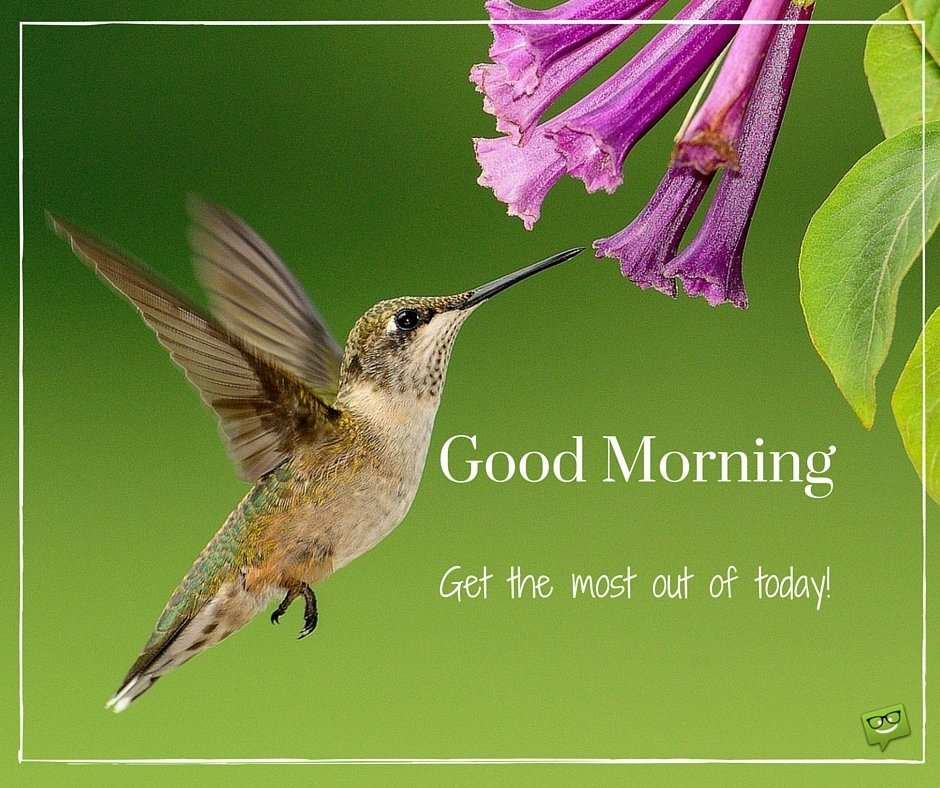 Good Morning. Get the most out of today!
