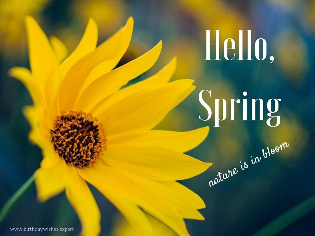 Hello, Spring. Nature is in bloom.