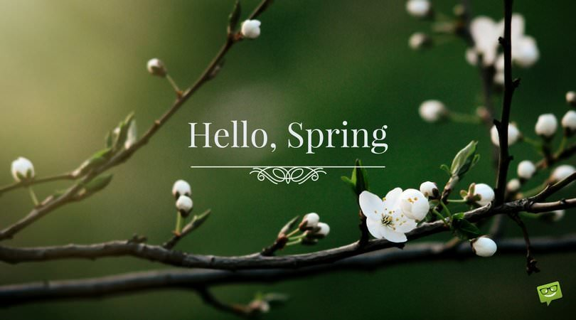 Hello-Spring-quote-on-picture-with-white