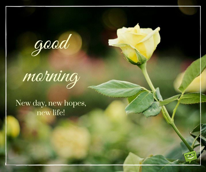 Good Morning. New day, new hopes, new life!