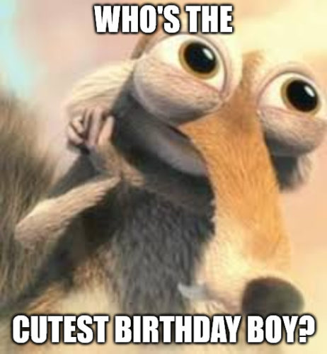 Who is the cutest birthday boy - Ice age squirrel in love meme.