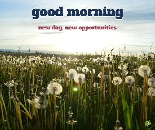 Good Morning. New day, new opportunities!