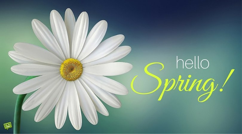 """Hello, Spring!"" Quotes"