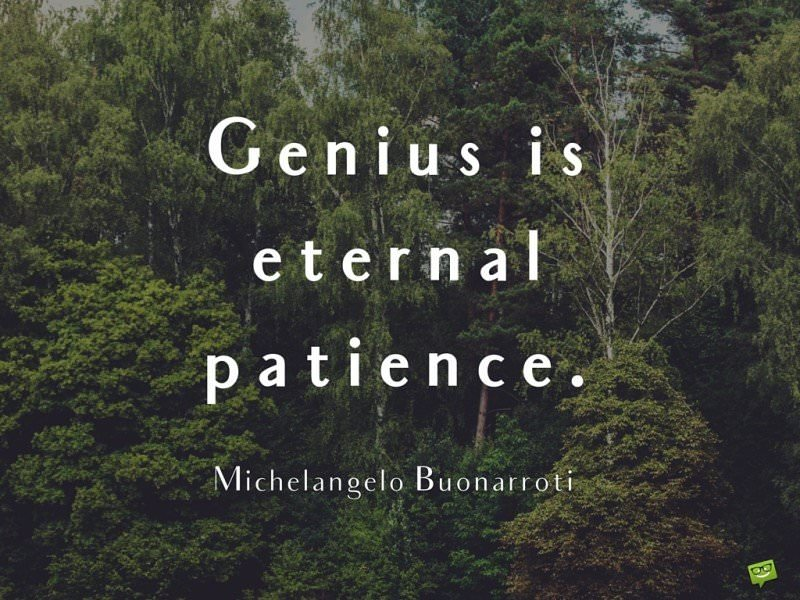 Genius is eternal patience. Michelangelo Buonarroti.
