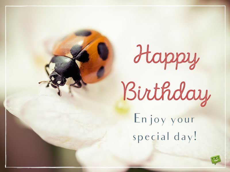 Image result for images great birthday