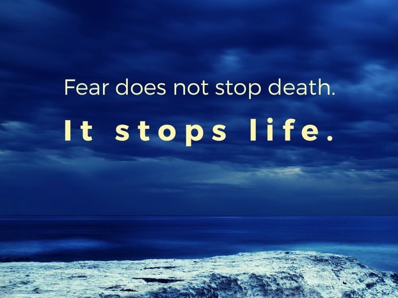 Fear does not stop death. It stops life.