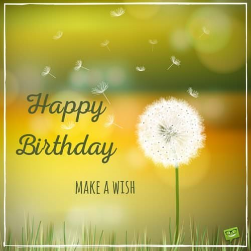 Happy Birthday. Make a wish!