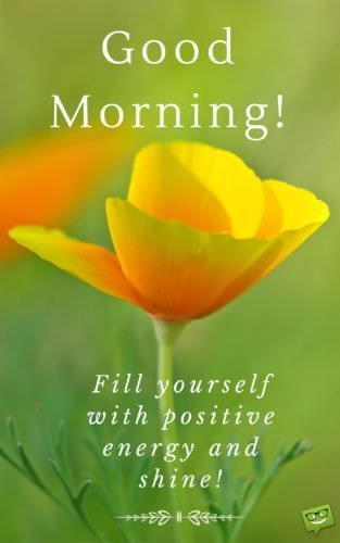 Good Morning! Fill yourself with positive energy and shine!