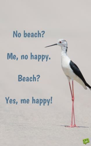 No beach? Me, no happy. Beach? Yes, me happy!