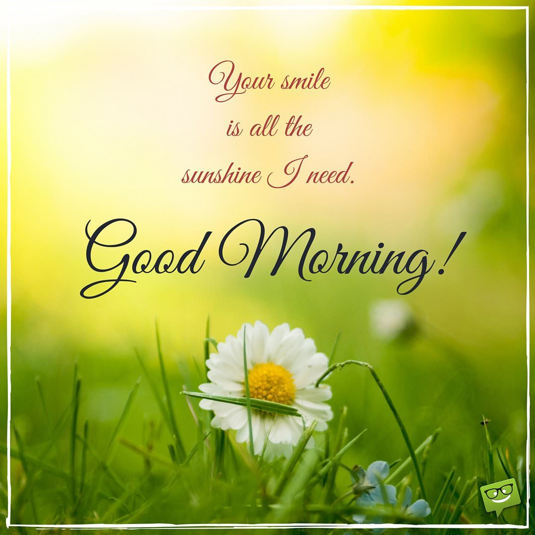 Sweet and romantic good morning love quotes and messages your smile is all the sunshine i need good morning m4hsunfo