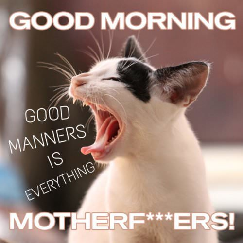 Good Manners is everything. Good Morning, motherf***ers!