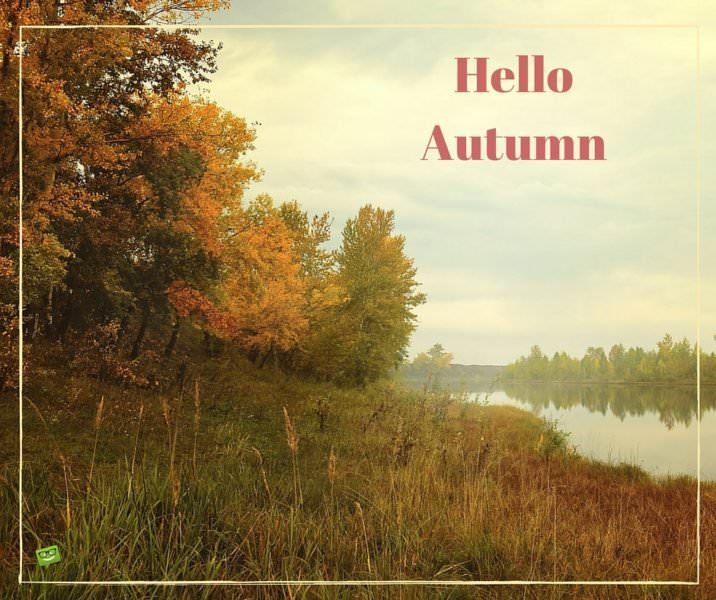 Hello Autumn.