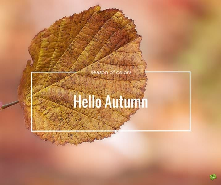 Hello Autumn. Season of colors.