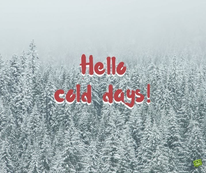 Hello, cold days!