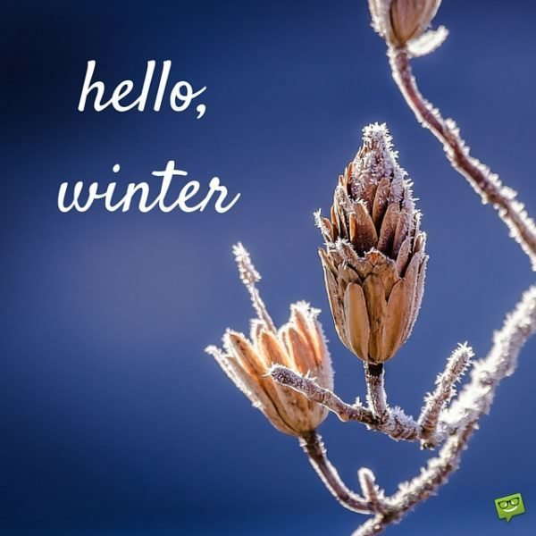 Hello, winter.