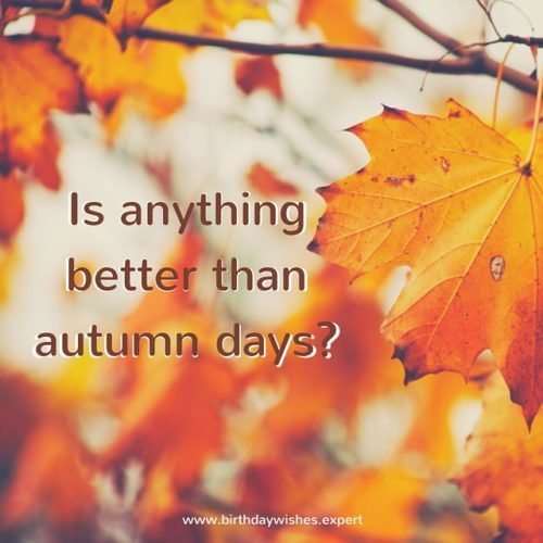 Is anything better than Autumn days?