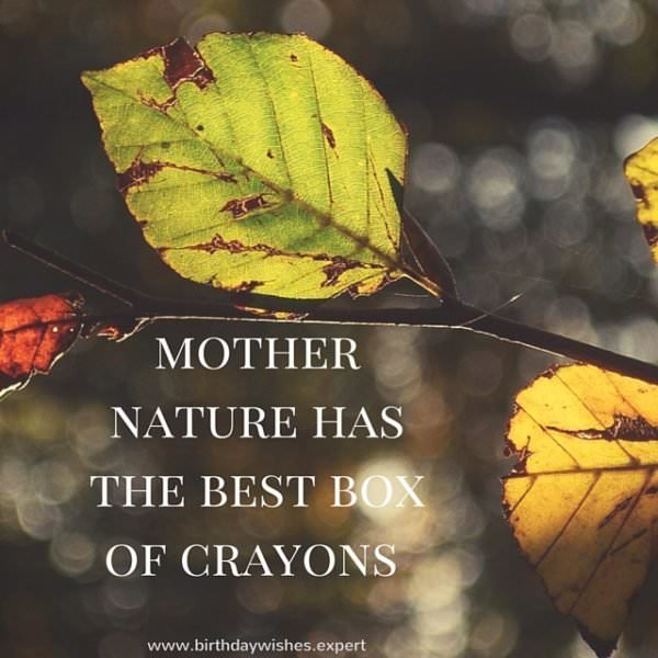 Mother nature has the best box of crayons.