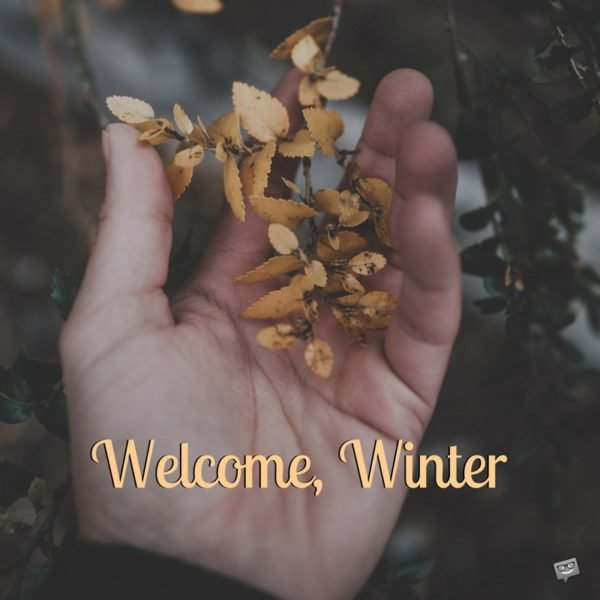 Welcome, Winter.