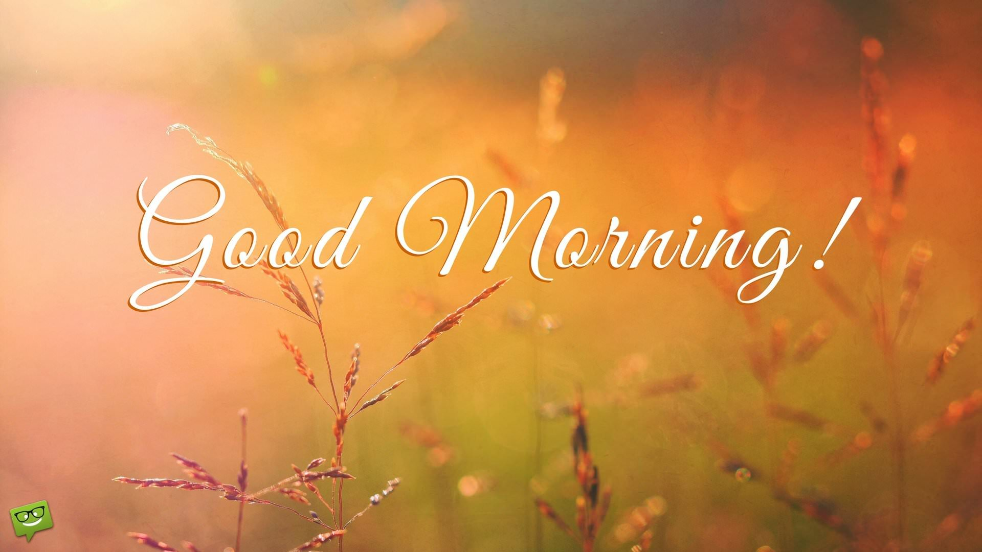 Good Morning Everyone Letter: Inspirational Good Morning Messages