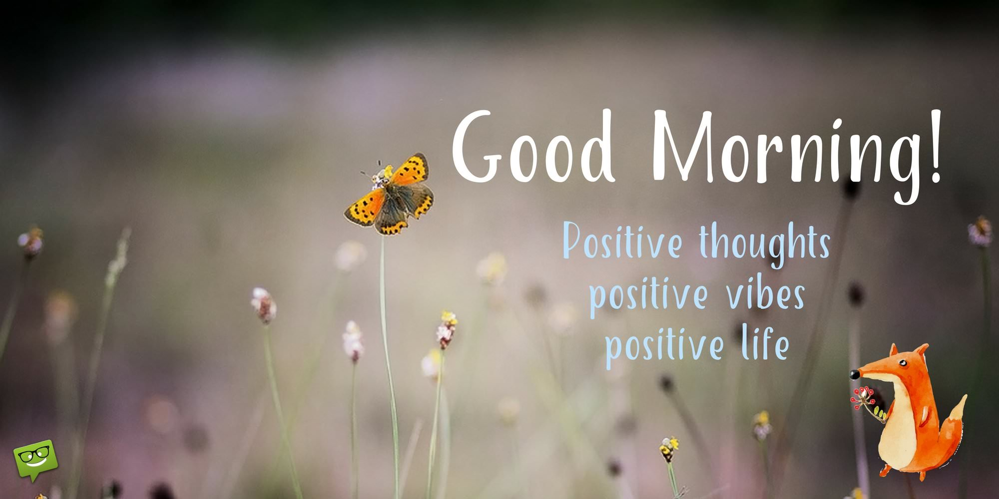 Good Positive Life Quotes Wake Up & Seize The Day  Positive Good Morning Quotes