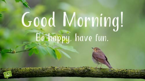 Good Morning. Be happy, have fun.