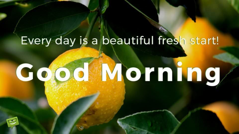 Good Morning. Everyday is a beautiful fresh start!