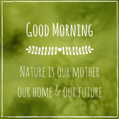 Good Morning. Nature is our mother our home & our future.