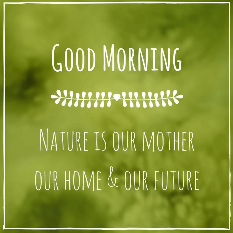 Good Morning Quotes Nature : Wake up seize the day positive good morning quotes