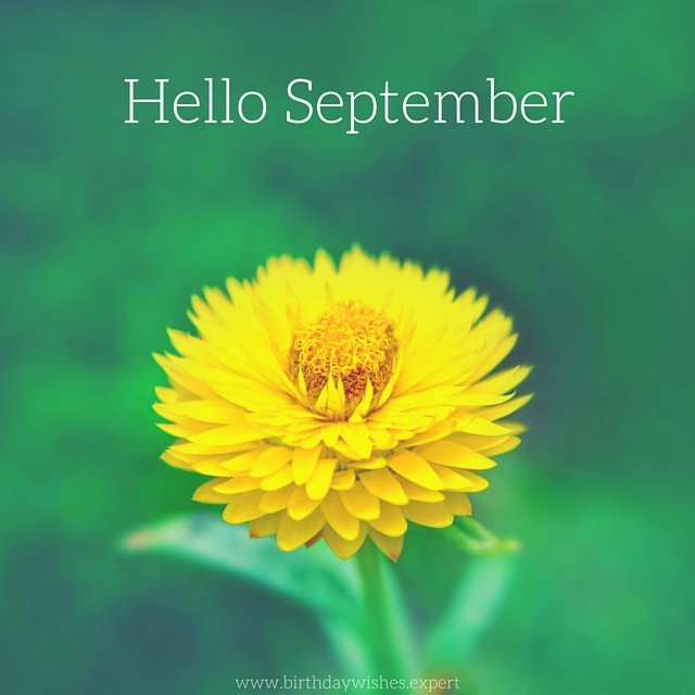 High Quality Hello, September!