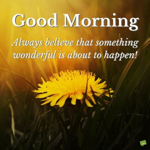 Good morning. Always believe that something wonderful is about to happen!