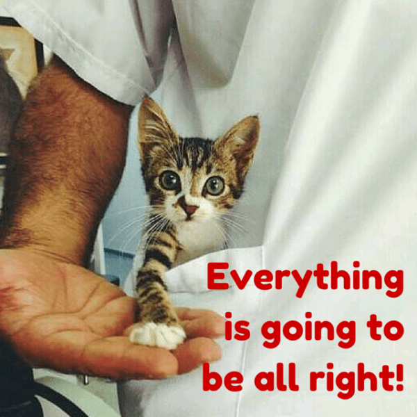 Everything is going to be all right.