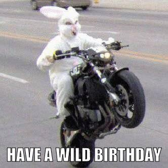 Have a Wild Birthday.