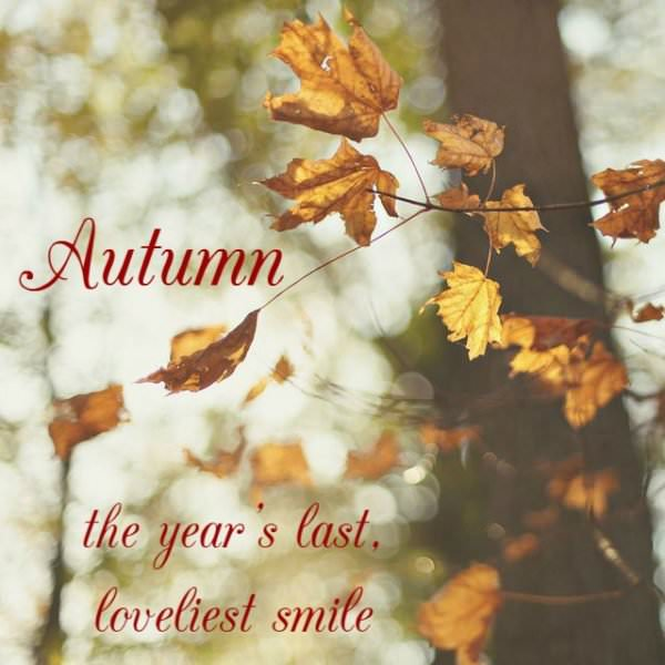 Autumn, the year's last loveliest smile.