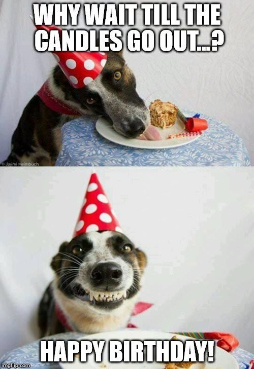 Top 100 Original and Funny Happy Birthday Memes - Part 3