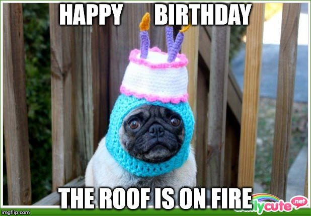 Happy Birthday. The roof is on FIRE!