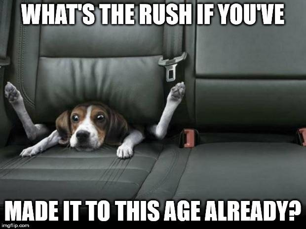 What's the rush if you've made it to this age already?
