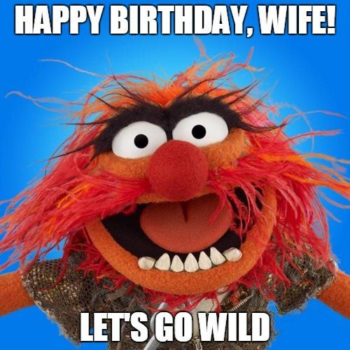 Happy Birthday, wife! Let's go wild.