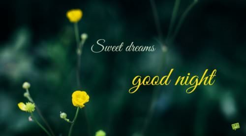 Sweet dreams. Good Night.