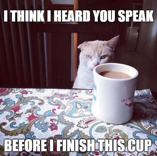 I think I heard you speak before I finish this cup.
