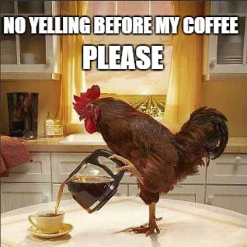 No yelling before my coffee, PLEASE.