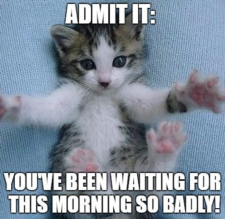 Admit it: you've been waiting for this morning so badly!