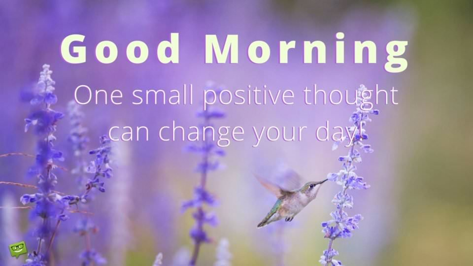 Good Morning. One small positive thought can change your day.
