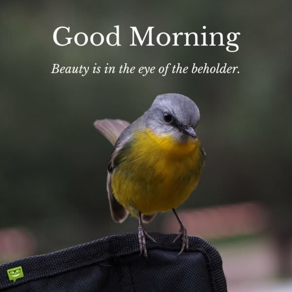 Good Morning.  Beauty is in the eye of the beholder.