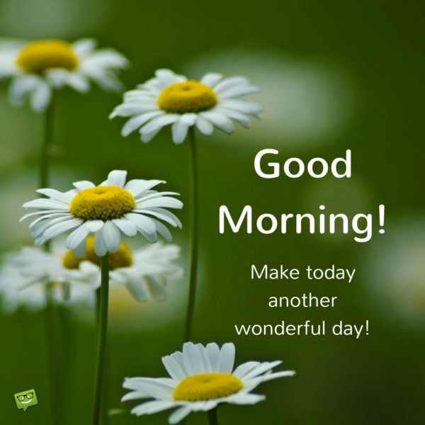 Good Morning Make today another wonderful day!