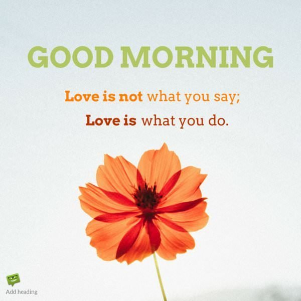 Good Morning. Love is not what you say. Love is what you do.
