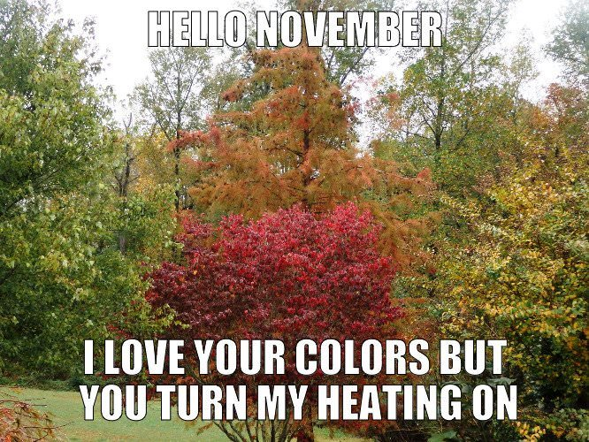 Hello, November. I love your colors but you turn my heating on.