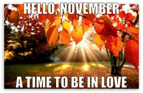 Hello, November. Time to be in love.