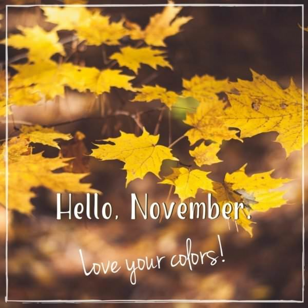 Hello, November. I love your colors!